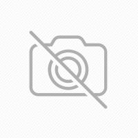 FITERMAN ALINAN VITAMINA C KIDS masticabila cu zmeura